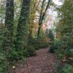 A walk in the gardens12