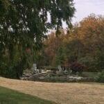 A walk in the gardens9