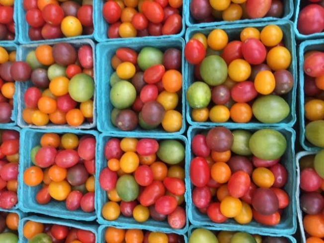 big_693-Tomatoes