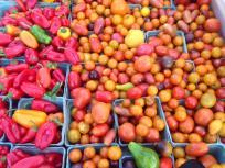 thumb_341-Bethesda-Farmer-Market
